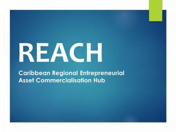 idb-caribbean-regional-entrepreneurial-asset-commercialisation-hub-r-e-a-c-h-consulting-opportunities