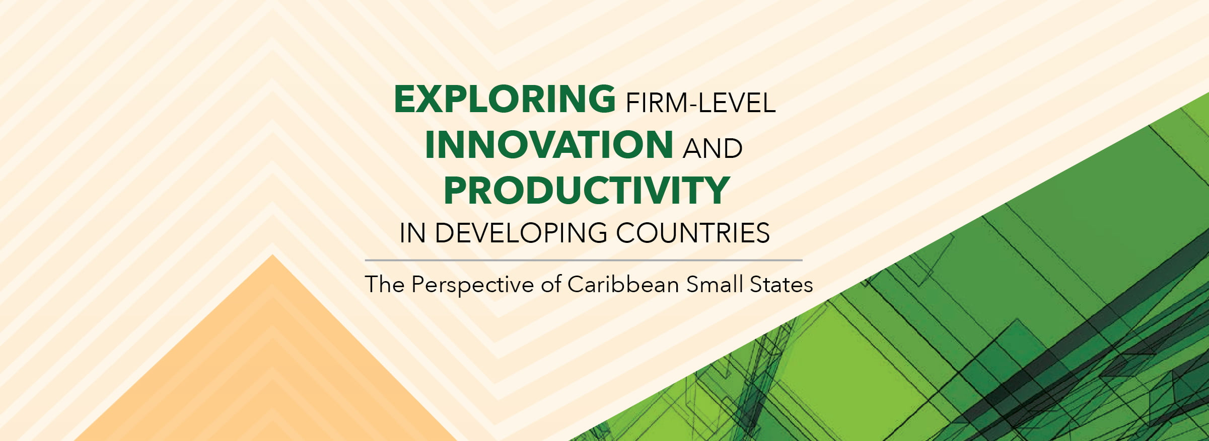 Exploring Firm-Level Innovation and Productivity