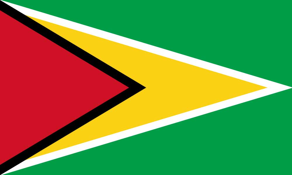 Implementation of a Secured Transaction Regime and Green Business Framework in Guyana